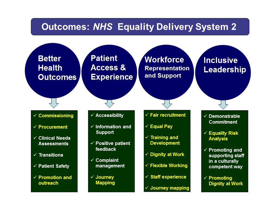 NHS Equality Delivery System